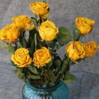 如何制作干花,并且保持花的色彩不变?